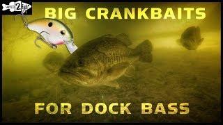 Why Use Aggressive Squarebill Crankbaits for Dock Bass