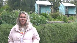 Guest Testimonial from Rosie