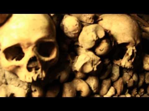 Skull and Bones - Catacombs Museum Paris