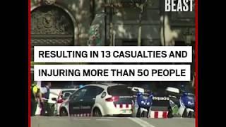 """Terror"" Truck Mows Down Tourist and Locals"