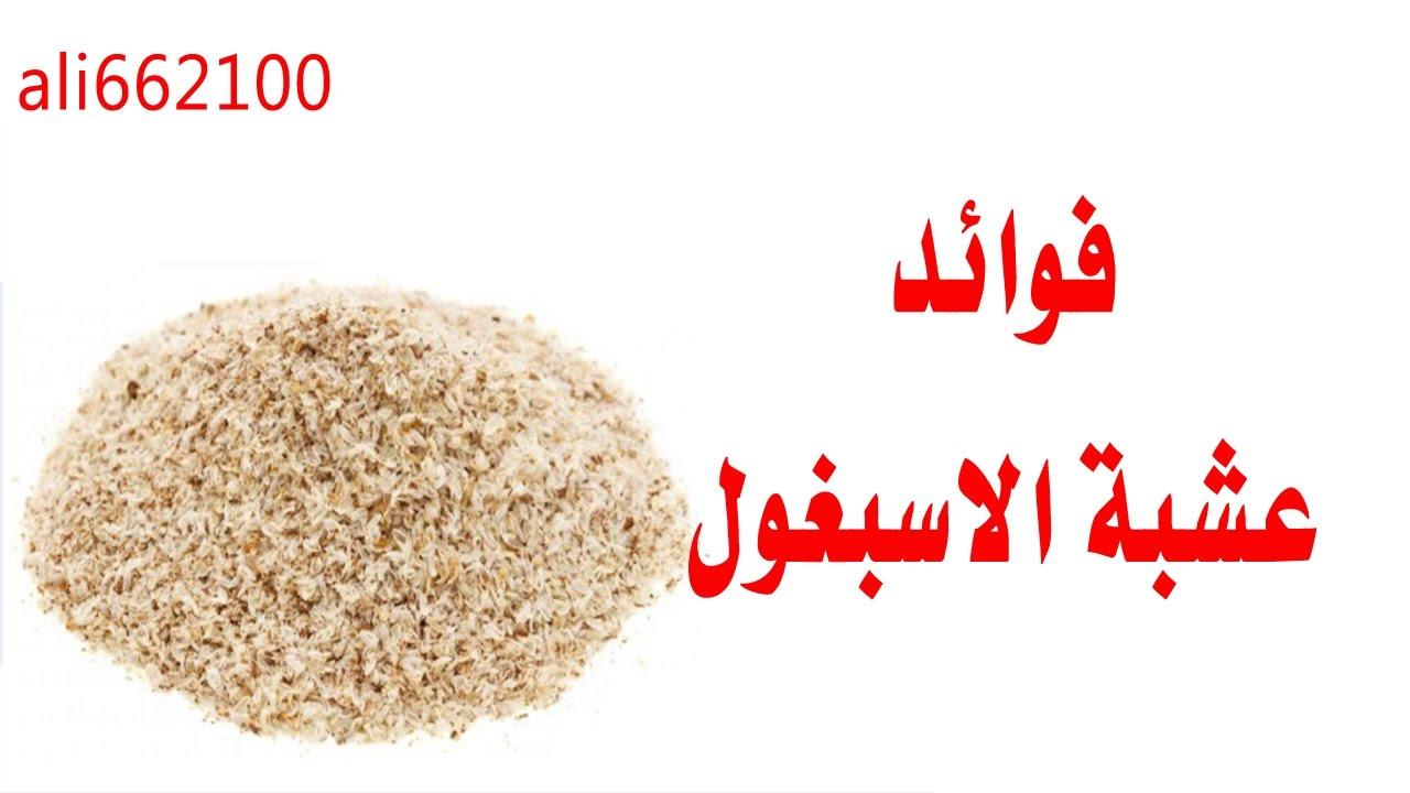فوائد عشبه الاسبغول Benefits Herb Plantago Ovata Youtube
