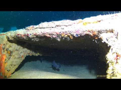 South Florida Mermaid exploring the Ancient Mariner Wreck