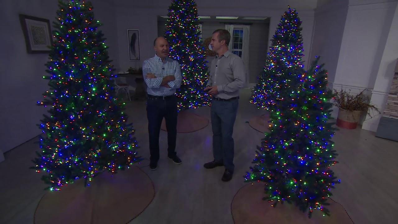 cheaper 75aad 8d785 Santa's Best Starry Light Microlight Tree w/Color Flip LED Lights on QVC