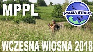 MPPL - wczesna wiosna 2018