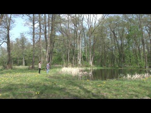 Dobre praktyki rolnicze w ochronie wód przed zanieczyszczeniami