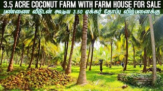 3.5 Acre Coconut Farm with Far…