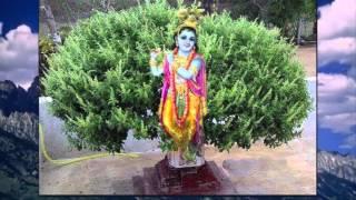 Panchama Veda