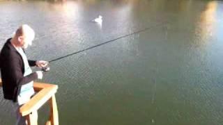 Рыбалка на Форель в Краснолесье г. Екатеринбург.flv