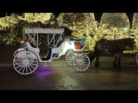 Christmas In Nashville, TN