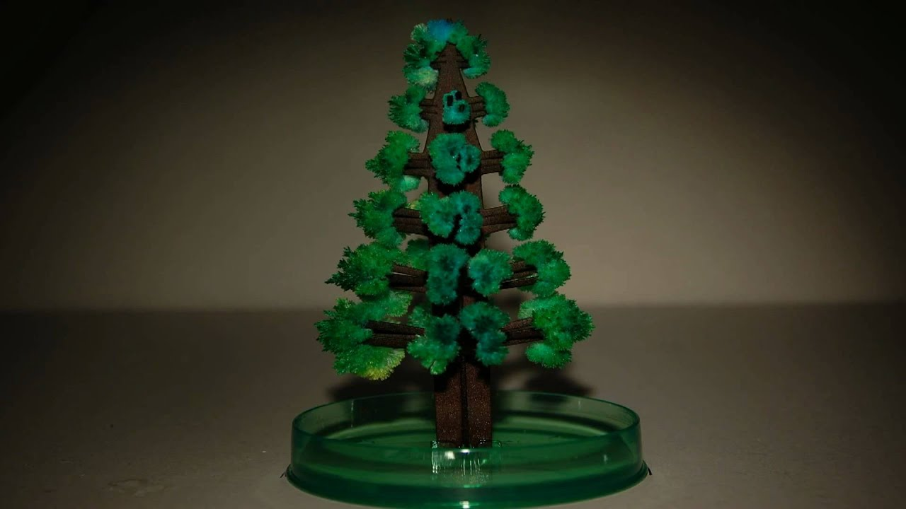 time lapse video of growing magic christmas tree zeitraffer aufnahme von wachsendem zauber baum youtube - Crystal Christmas Tree