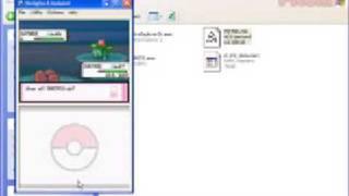 Wild Pokémon Editor DS Tutorial