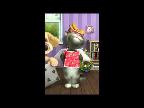 Mèo hát liên khúc nhạc chế Con Bướm Xuân- Cô Giáo xinh -Mua Vé Xe