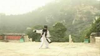 Bagua Flying Dragon Sword