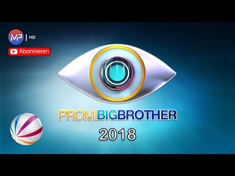 Promi Big Brother Song