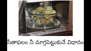 Easy way to ripen Custard apple and easy way to eat it || By LALITHA GUPTA