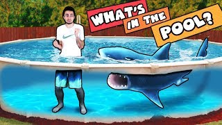 WHAT'S IN THE POOL CHALLENGE! (Ahhhh!!! IT'S ALIVE)