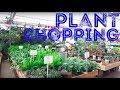 Plant Shopping At Paulino Gardens + Mini Haul