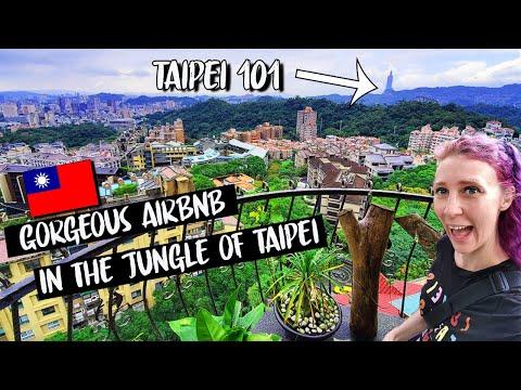 IN THE JUNGLE Overlooking Taipei !!!! // BEST Airbnb in TAIPEI Taiwan