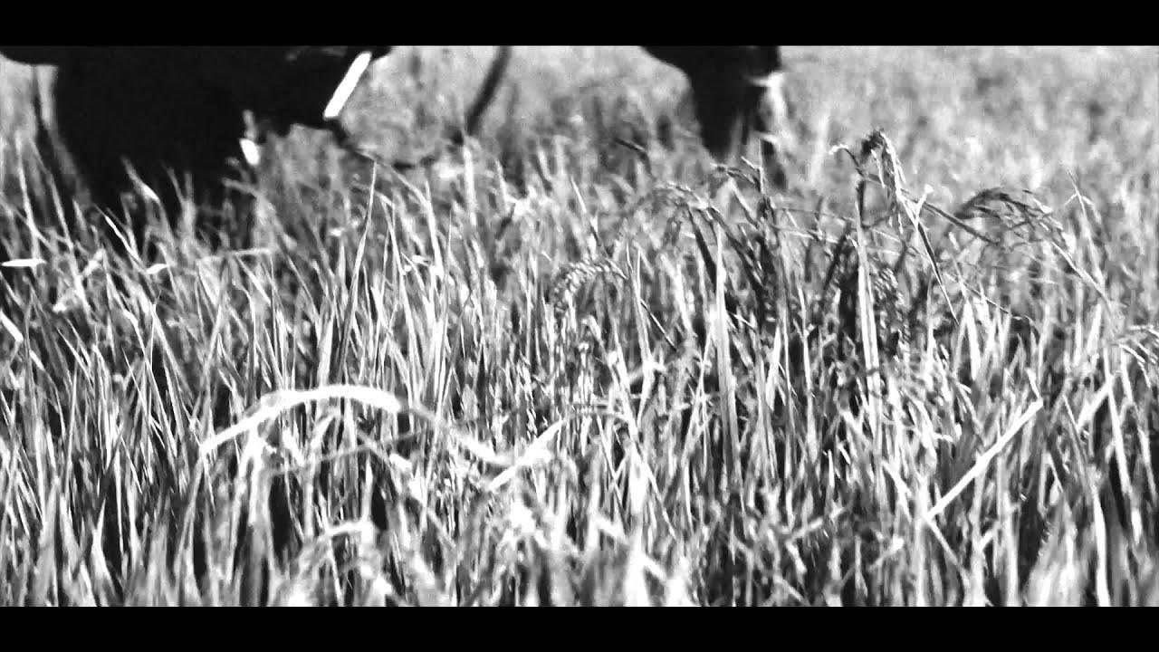 Leica volta ao passado com F/Nazca