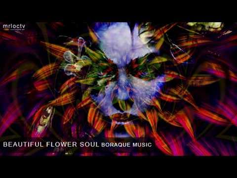 Tâm hồn hoa đẹp - Beautiful flower soul | Baroque Music
