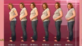 беременность 6 месяцев и бандаж (минус 40 кг), довольна.mpg