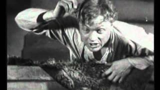Рекламный ролик ПАЛАТИН с нарезкой из фильма ЧАПАЕВ
