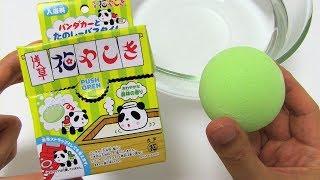 Panda Car Bath Bomb