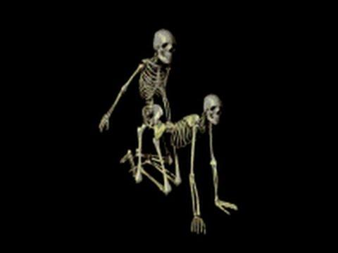 mak-kompilyatsiya-muzhik-trahaet-skeleta-model