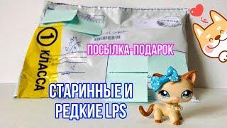 LPS / ПЕРВАЯ в коллекции lps ! / Lps посылка с Avito