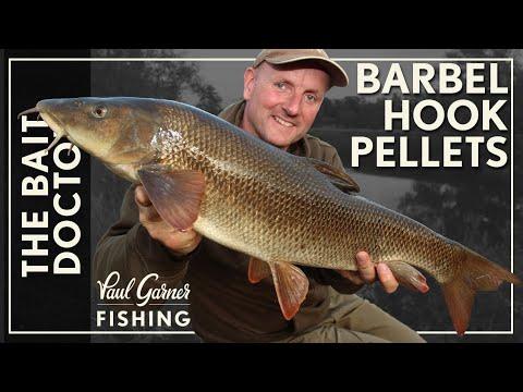 Barbel Fishing : Make Pellet Hookbaits