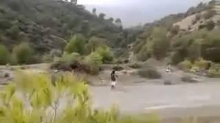 القبض على إرهابي حي في جبال البويرة