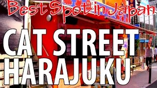 Cat Street Harajuku 裏原宿のキャットストリート