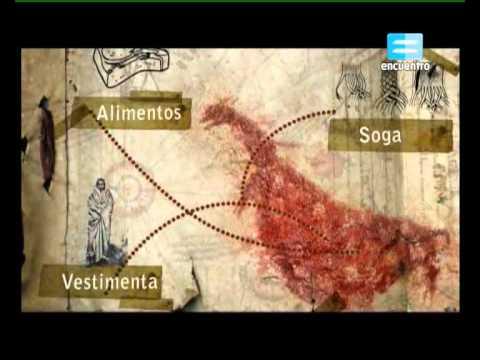 Huellas Arte argentino - Capítulo 1 Arte plástico rupestre