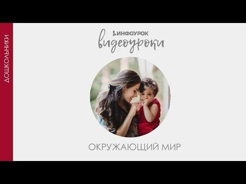 Видеоурок путешествие по москве