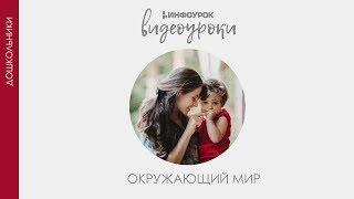 Путешествие по Москве | Дошкольники | Окружающий мир #32 | Инфоурок