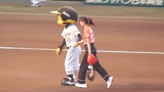 NHKのドラマ主演の戸田恵梨香さんの始球式が試合前にありました。 (甲子園 T3-De0) #阪神タイガース #甲子園 #始球式 #戸田恵梨香.
