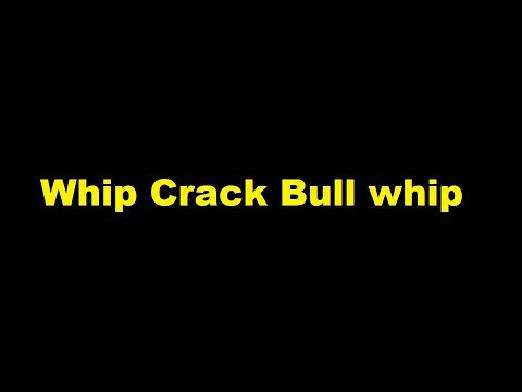 Whip Crack Bull whip - sound effect