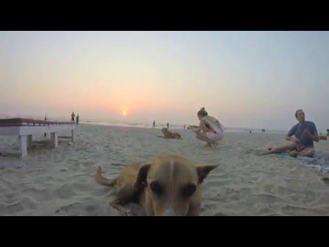 Bombay - Hamma Hamma VS Miguel Bastida - Soul Reactions (Gorge S Summer Rework) (Dj Lion Mashup)