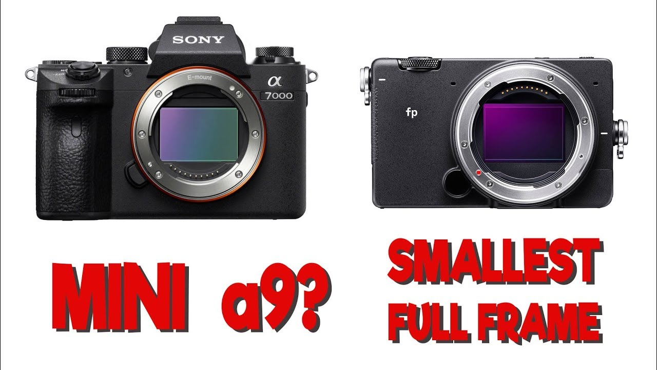 Worlds Smallest Full Frame and Sony a7000 rumors - TOGLIFE