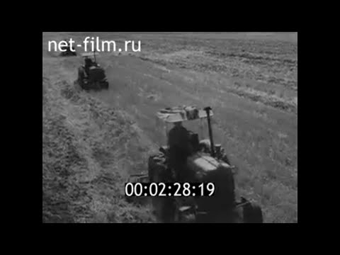 1964г. колхоз Рассвет Юрьев-Польский район Владимирская обл