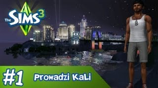 The Sims 3 - Tak, czy nie? #1