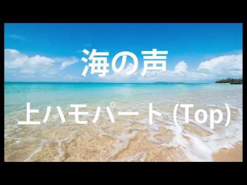 海の声 (Originally BEGIN / 桐谷健太 / 浦島太郎) ハモり練習用 上のコーラスパートのみ Covered by Singer micah