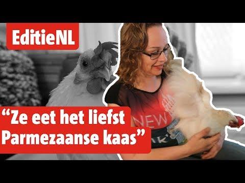 Els Heeft een Huiskip! – EDITIE NL