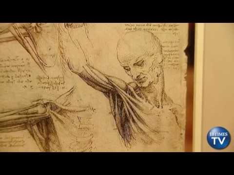 Leonardo Da Vinci The Scientist New Show Reveals Anatomy Of A
