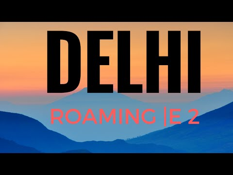 DELHI VLOG || TRAVEL GUIDE || MARKET AREA || TRAVEL IN INDIA || DELHI STREET FOOD