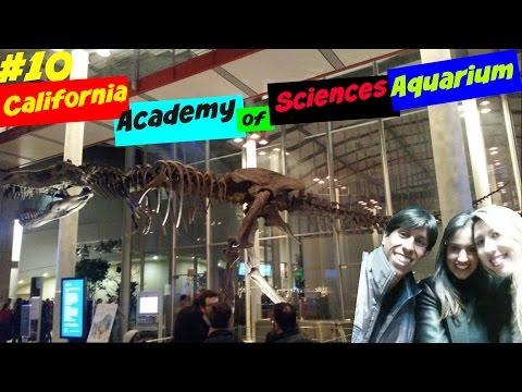 California Academy of Sciences em San Francisco
