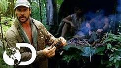 Joe usa nido de termitas para hacer fuego en la selva   Desafo x 2   Discovery Latinoamrica