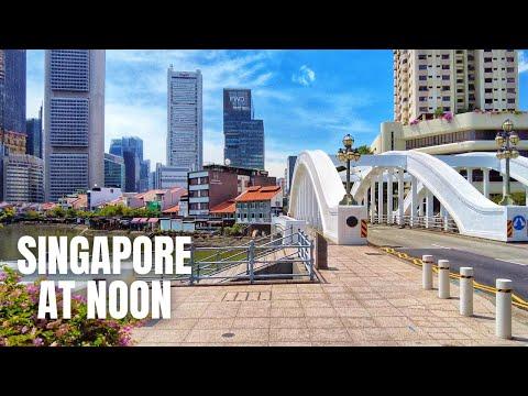 Singapore City Tour (2020)