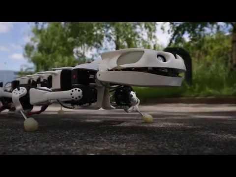 A new robot mimics vertebrate motion