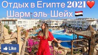 Отдых в Египте в 2021 Как улететь в Египет из России в период коронавируса Обзор отеля Sharming Inn